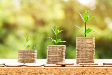 investir en ligne : ce qu'il faut savoir
